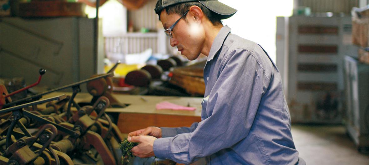 かつて茶農家でアルバイトをしていた岩本さん。今でも時間が空けばお茶づくりを手伝うのだそう。