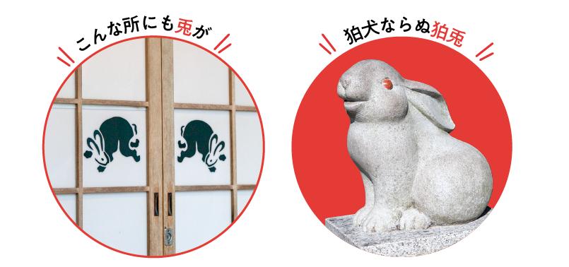 狛兎と襖兎