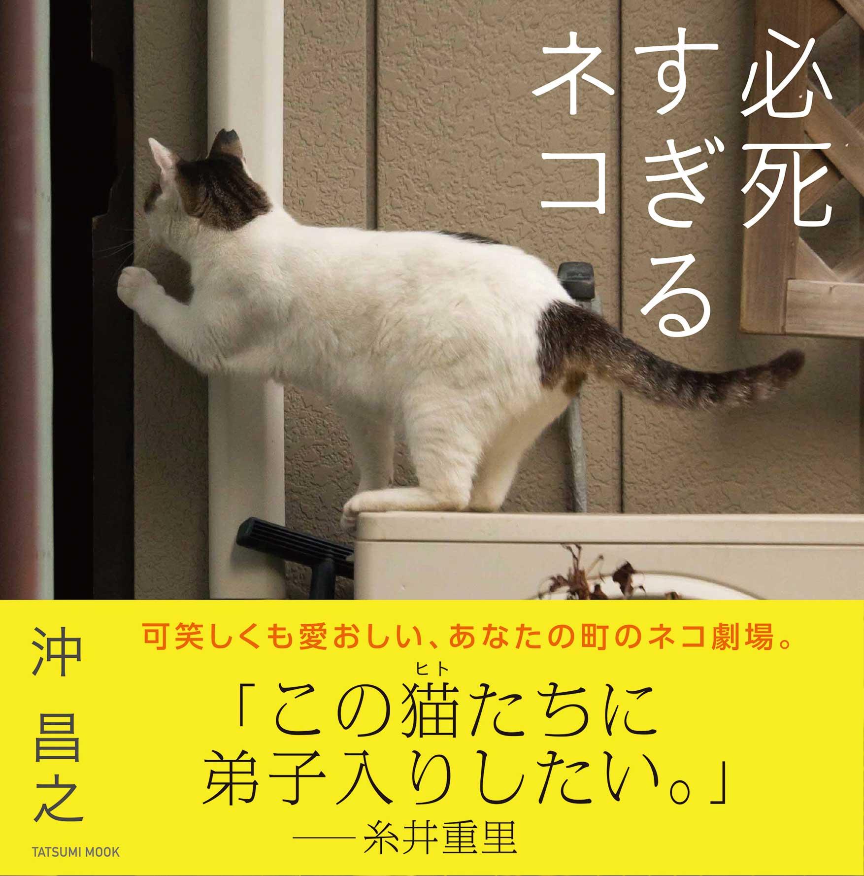 『必死すぎるネコ』<br> (辰巳出版、定価1,296 円)