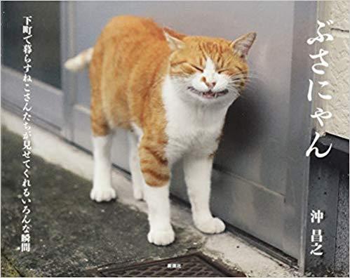 『ぶさにゃん』<br> (新潮社、定価1,200円)