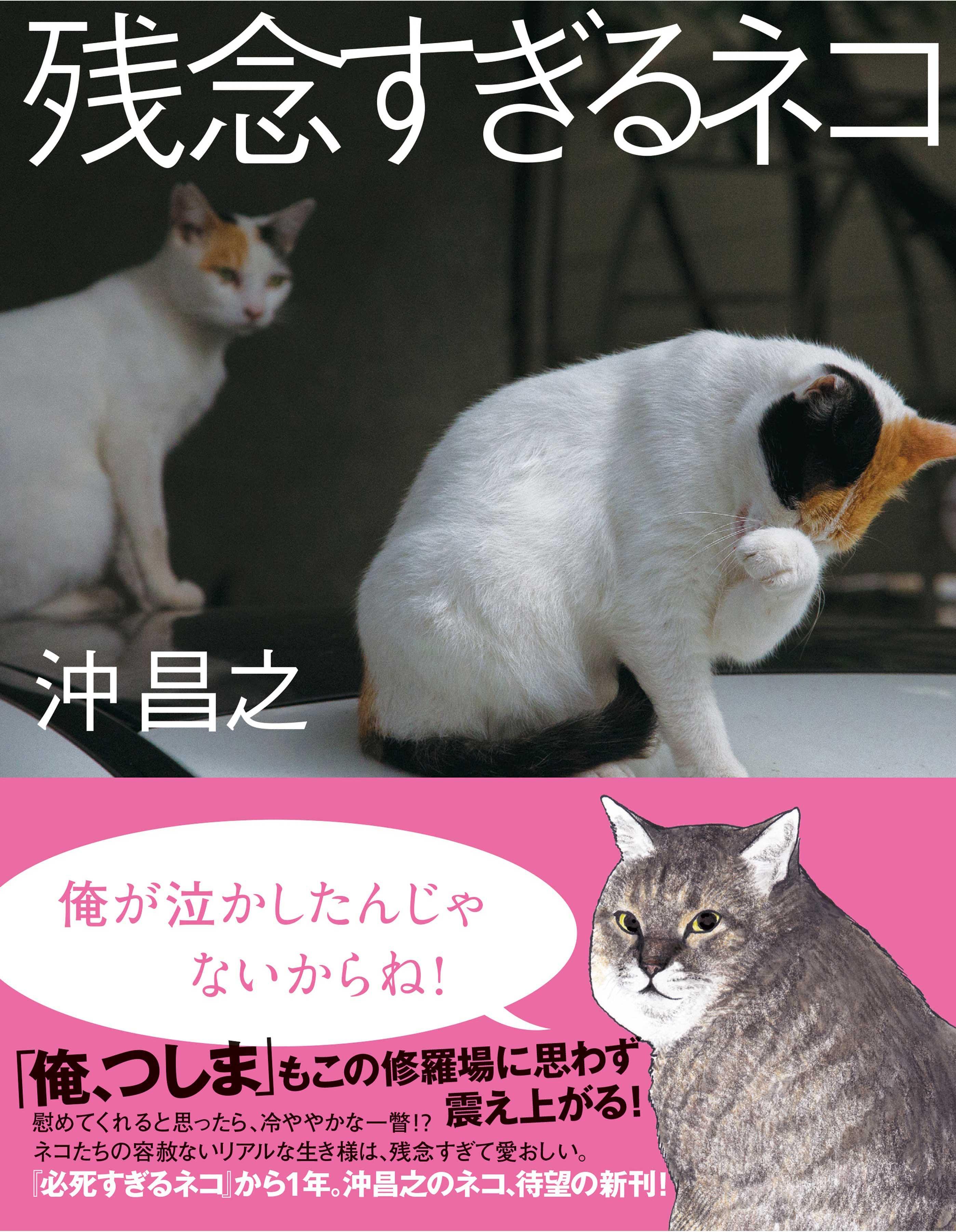 『残念すぎるネコ』<br> (大和書房、定価1,200円)