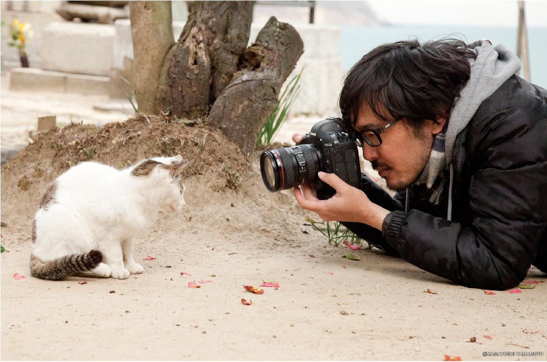 猫と沖さん