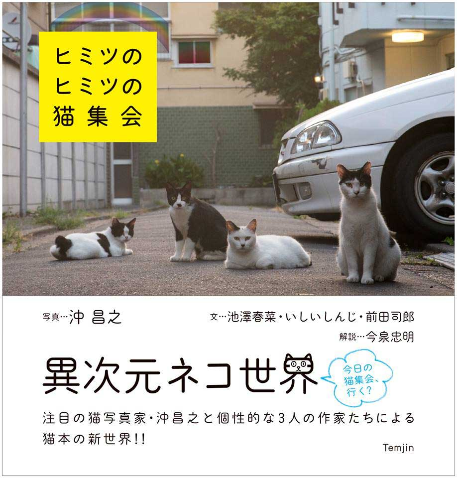 『ヒミツのヒミツの猫集会』<br> (天夢人、定価1,250円)