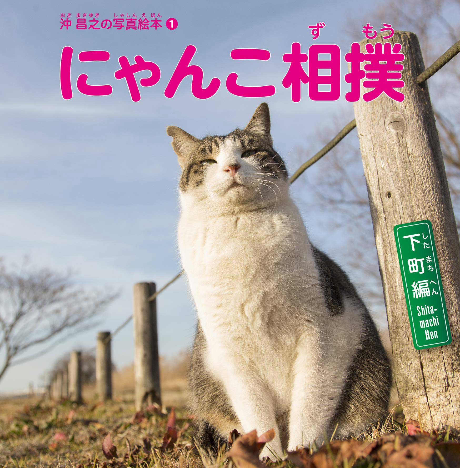 『沖昌之の写真絵本1 にゃんこ相撲 下町編』<br> (大空出版、定価1,200円)