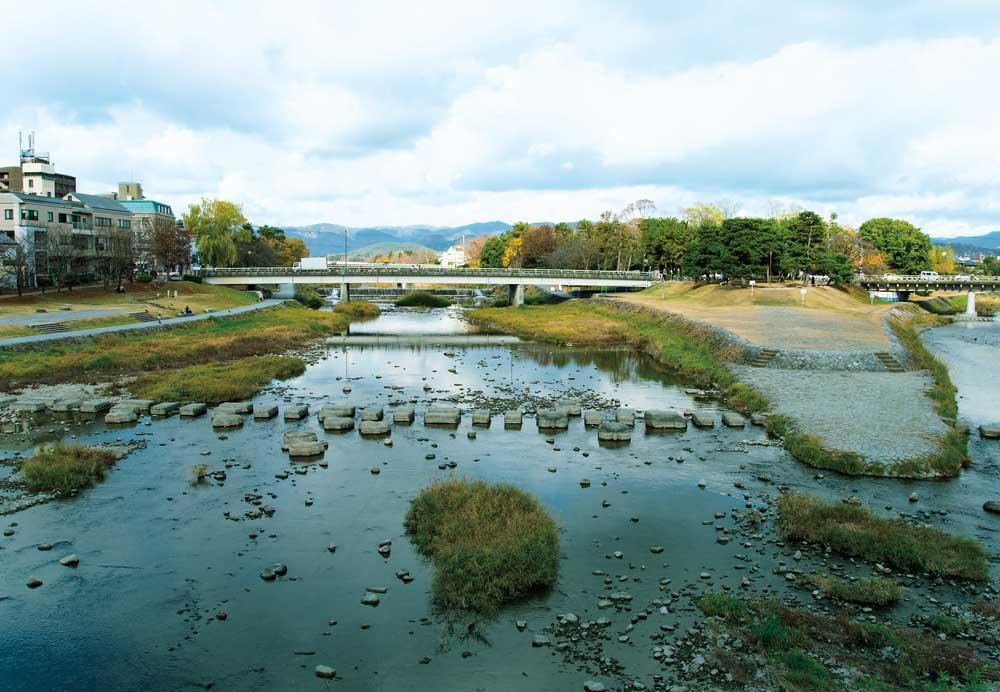 鴨川の写真